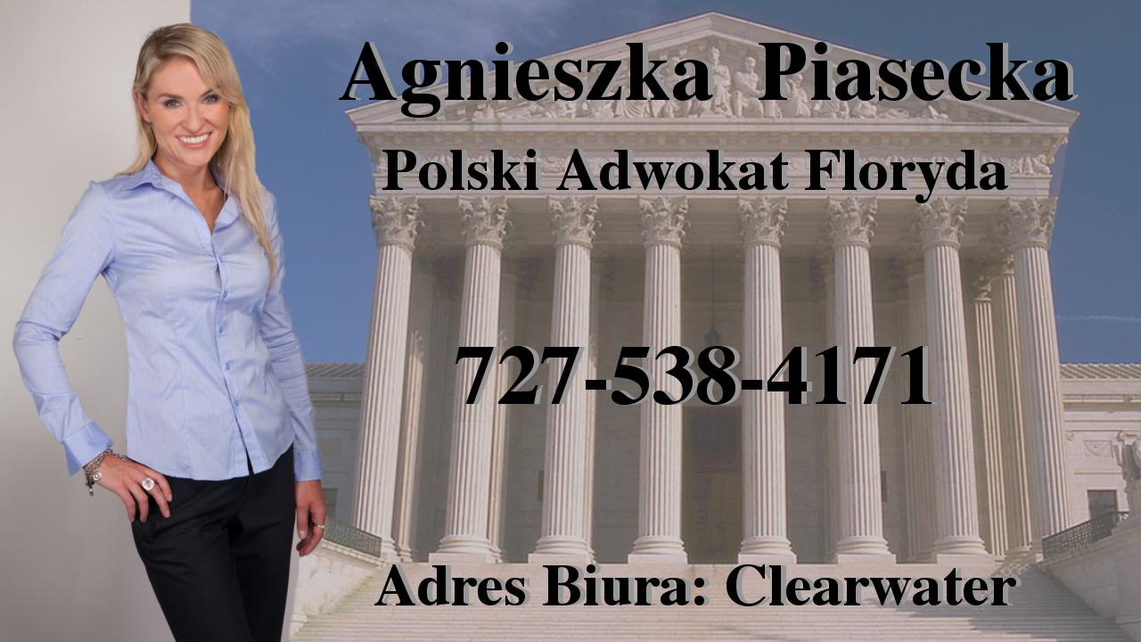 Polscy Prawnicy - USA