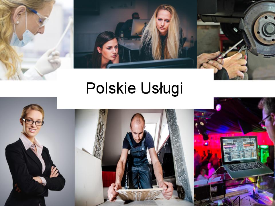 Polskie Usługi - USA